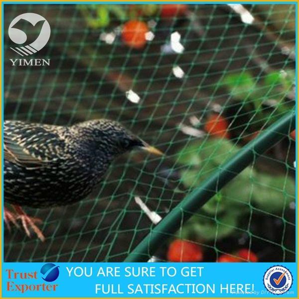 Anti bird net 2