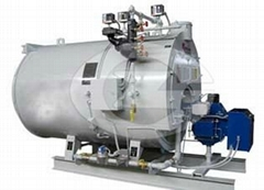 5 ton gas fired hot water boiler