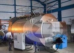6 ton gas fired hot water boiler