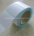 Thermal Label Roll In China 1