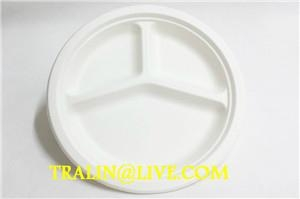 biodegradable disposable tableware  4