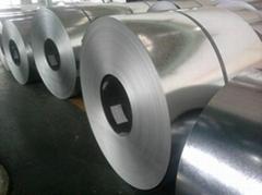 PPGI-prepainted steel coils