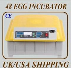 48 Eggs 98% hatching rate Automatic Chicken Egg Incubator (YZ8-48)   Chicken Egg