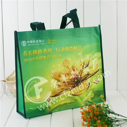 上海無紡布環保袋 1