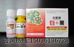 防治白粉虱长效  药