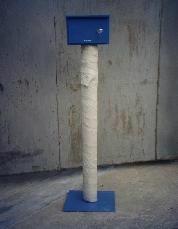 檢測樁測試樁  1