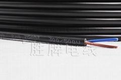 2芯0.75平方RVV電源線 護套線 屏蔽線