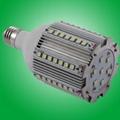 15W  LED庭院燈