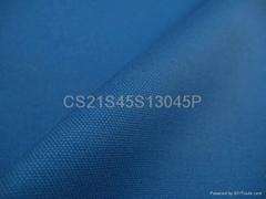 100%棉帆布雙經雙緯帆布