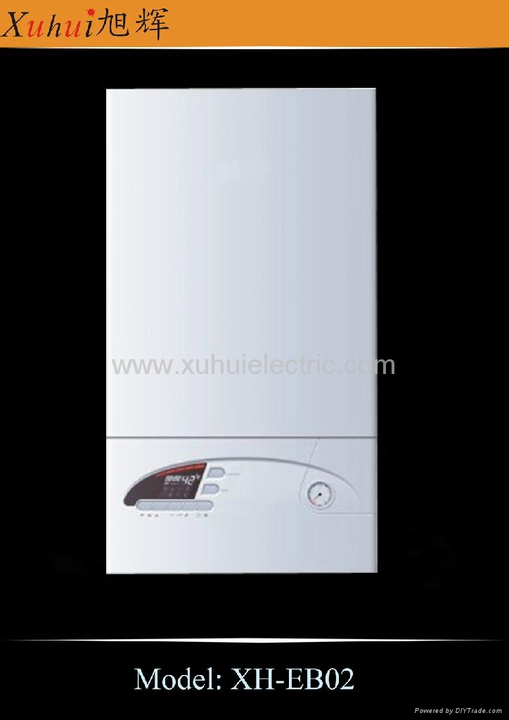 Gas boiler for both heater and DHW 3