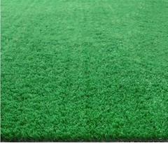 幼儿園草坪