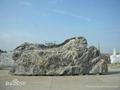 景观石 4