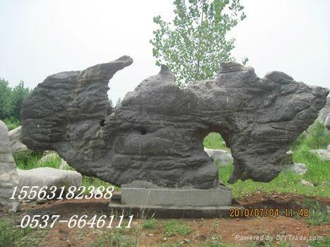 景观石 5