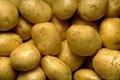 Fresh Potato 1