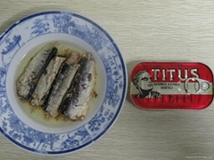 Supply High Quality Canned Sardine In oil