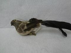 Feather pheasant