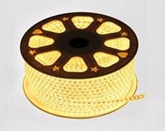 AC110V-220V 5050 LED軟燈條