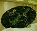 Aritificial/fake/Plastic Plant Wall Artificial Garden plant wall decorate indoor 3