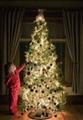 2014 new design outdoor christmas tree