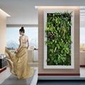 Aritificial/fake/Plastic Plant Wall