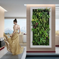 Aritificial/fake/Plastic Plant Wall Artificial Garden plant wall decorate indoor