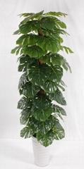 Artificial potted plants taro root plant,artificial scindapsus bonsai