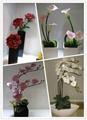 Artificial flower rose bud/single rose wreath/rose balls  3