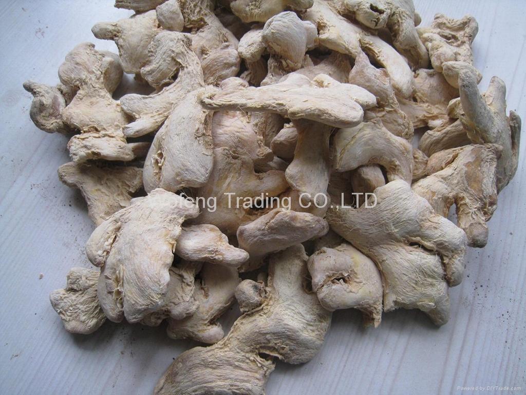 Dried Ginger Whole Led China