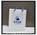 Gift Hand Bags 5