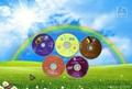 Blank DVD Printable 8X 5
