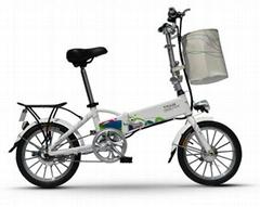锂电电动自行车