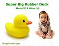 Giant rubber ducks