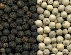 we sale grade a quality black pepper