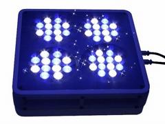 APOLLO-4水族灯