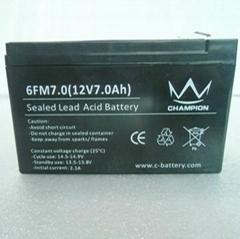 12v7ah AGM battery
