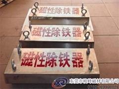 懸挂式輸送帶磁板