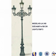 puplic street cast iron lamp post