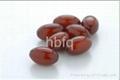 OEM Service High Quality Coenzyme Q10