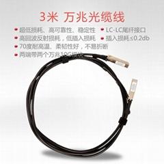 原裝3米萬兆光纜