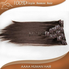 chinese sites virgin unprocessed brazilian clip in human hair extensions