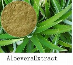 Aloe Vaera Extract