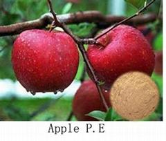 Apple P.E
