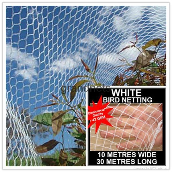 bird nets for catching birds 2