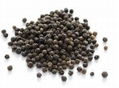 Vietnam Black Pepper and White Pepper