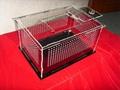 transparent plate turtle tank fish tank 1
