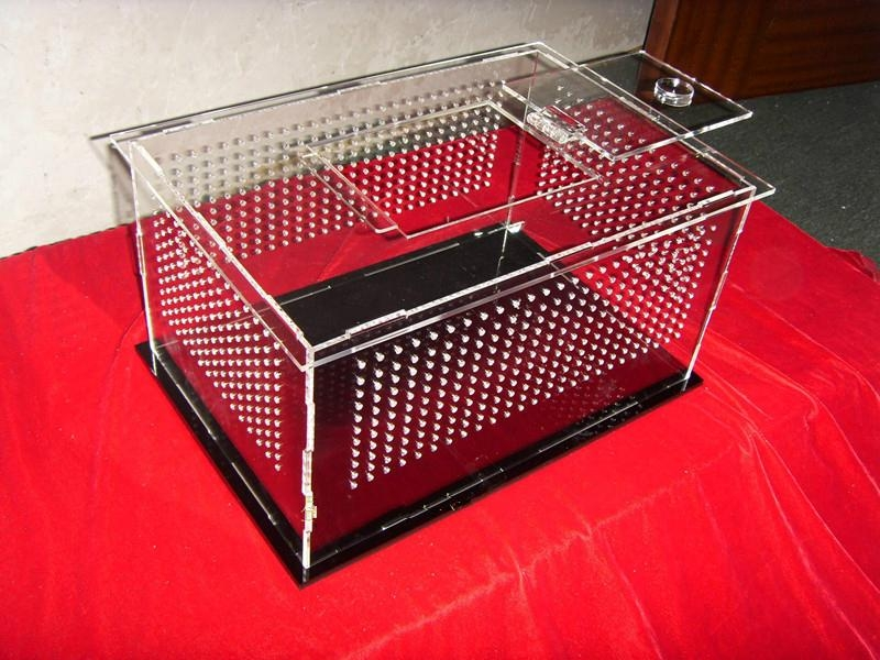 transparent plate turtle tank fish tank 1