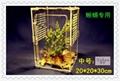 Creepiness acrylic box, reptile tank
