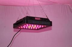 Summer 120W LED Grow Light (Dimming)Lens Version
