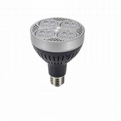 40W par30 led spotlight