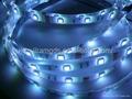 wholesale 60led/m 5050 flexible led